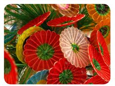 Crin, lindo Chile, Plant Leaves, Arts And Crafts, Plants, Baskets, Viajes, Tela, Ribbons, Tejidos