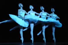 I do so want to be in swan lake!