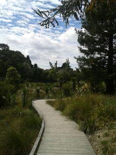 La Rosa Gardens in Green Bay Waitakere
