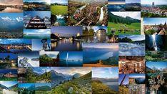 Grand Tour of Switzerland fotók - Síelők fotóalbum Switzerland Tour, Grand Tour, Aquarium, Pictures, Photograph Album, Goldfish Bowl, Aquarium Fish Tank, Aquarius, Fish Tank