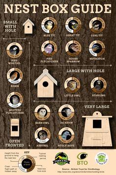 Nest Box Guide