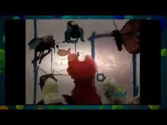 Elmo's World  Bugs Full Episode