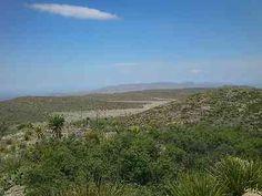 Invitan a propietarios de ranchos UMA a presentar informe