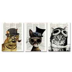 Dandy Cat  Friends 3 Pack, 17€, now featured on Fab.