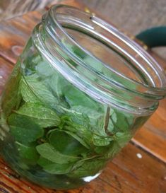 Rinse a bunch of mint and pluck the leaves. Take the cooled -- or mostly cooled -- syrup and pack it with mint leaves plucked from their stems. The stems can add woody, soapy flavors, so take the extra time to pluck. Leave the syrup and mint in a jar in the fridge overnight.