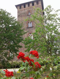 Castello Visconteo by AS Massari