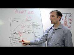▶ The Heartburn Myth - YouTube