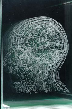 Glass Brain. Angela Palmer takes MRI and CT scans and etches them onto a sheet of glass, over and over. Then she stacks them to make a 3-D engraved glass portrait of the brain. Awesome!