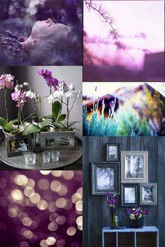 Violet & Lavender [Friday Flickr Photo Collage] | Flickr - Photo Sharing!