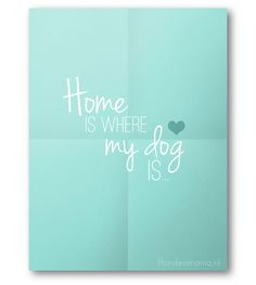 Home is where the dog is!    (Made by: LNNK, www.lnnk.nl)