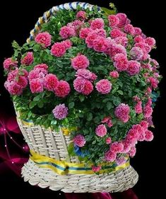 Good Morning Beautiful Flowers, Beautiful Bouquet Of Flowers, Beautiful Roses, House Plants Decor, Plant Decor, Flower Arrangements, Shapes, Gifts, Good Afternoon