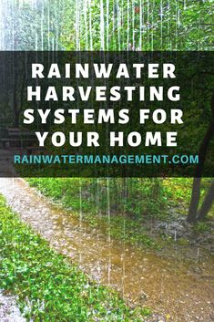 Find everything you need to capture and recycle rainwater at your home or business and manage storm water. Rainwater Management Solutions offers the best prices, consultation and services to meet your needs. Organic Horticulture, Organic Gardening, Water From Air, Rainwater Harvesting System, Healthy Environment, Ornamental Plants, Natural Garden, Water Conservation, Water Systems