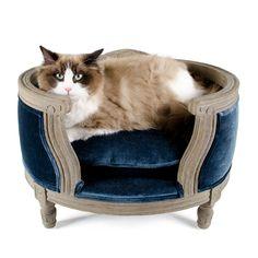 Kattensofa George Cut-Pile Blue  Op deze luxe en stijlvolle sofa in Louis XVI stijl kan uw huisdier heerlijk vertoeven. Het  solide eiken houten frame is duurzaam en bijzonder stijlvol en elegant.  De sofa is voorzien van een bijpassend kussen, welke dankzij de behandeling met Teflon® vuil- en waterafstotend is. Het kussen is wasbaar op 30 graden.          Produktoverzicht:Kleur:           Maat:       sofa George Cut-Pile Blue in Louis XVI Stijl met solide eiken frame met bijpassend… Pet Beds, Egg Chair, Dog Cat, Puppies, Pets, Sofa, Animals, Medium, Crafts
