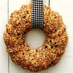 Making a Bird Seed Wreath, made birdseed Christmas ornaments with the grands - making this for myself.  Love wreaths!!