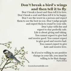 Lessons Learned in Life | Broken wings.