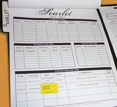 Horse health record form - excel or PDF... repinned with thanks by DressageWaikato.co.nz...