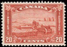 Canada #175, F-VF, MNH