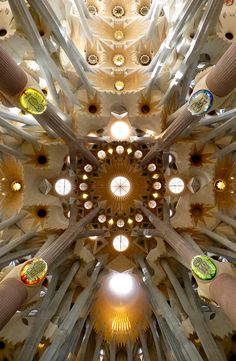 The ceiling of Gaudi's Sagrada Familia, Barcelona (the entire church is it's a must-see down to every intricate detail!) #Catalonia