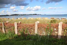 Natürlicher Windschutz am Eckernförder Strand