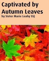 Captivated by Autumn Leaves by Sister Marie Leahy SSJ | Sisters of Saint Joseph of Philadelphia