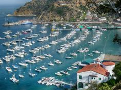 Catalina Island is a good place for a day trip or weekend getaway - find out when to go, what to do, who likes it and why
