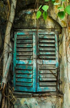 184 Best Old Chippy Shutters Images On Pinterest In 2018