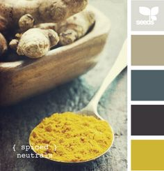 Light gray, taupe, blue gray, dark blue gray and mustard yellow.