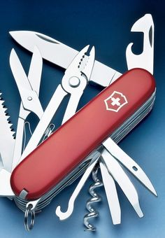 Victorinox pocket knife: This is a great present for young and old. Very useful for nature hike.