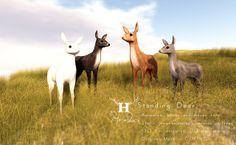 +Half-Deer+ http://maps.secondlife.com/secondlife/Farrington%20Heights/185/95/31