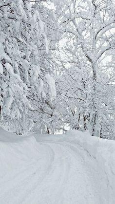 ideas for nature winter wonderland snow scenes Winter Szenen, I Love Winter, Winter Magic, Winter Christmas, Prim Christmas, Christmas Cards, Christmas Scenes, Country Christmas, Winter Photography