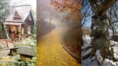 """abandoned Wizard of Oz Theme Park in North Carolina opens once a year for """"Autumn of Oz"""""""