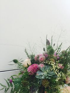 Succulent Plant Bouquet