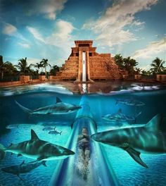 Atlantis, Paradise Island, Bahamas. Gorgeous Vacation Spots That Will Make Your Jaw Drop
