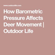 How Barometric Pressure Affects Deer Movement | Outdoor Life
