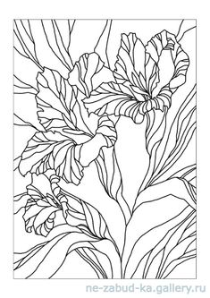 Stained Glass Patterns Free, Stained Glass Quilt, Coloring Books, Coloring Pages, Coloring Sheets, Aari Embroidery, Painting Lessons, Silk Painting, Christmas Colors