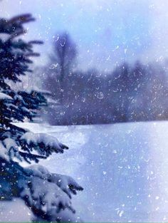 •snow days• awesome  cool,  wow -  beautiful