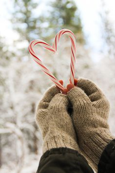 Photo by Emily Gollub   Candy Cane heart!
