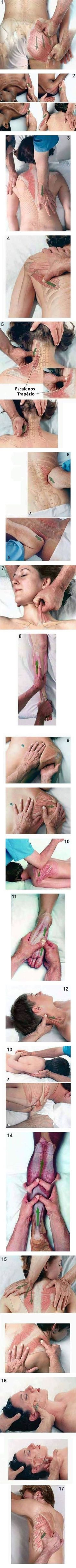 Feel Incredible With These Great Massage Tips. A full body massage is something that can provide numerous benefits for you. This can help both your physical and emotional state. Health Tips, Health And Wellness, Health And Beauty, Health Fitness, Fitness Diet, Massage Tips, Massage Therapy, Massage Body, Fitness Workouts