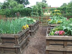 I dream of a raised bed garden like this!