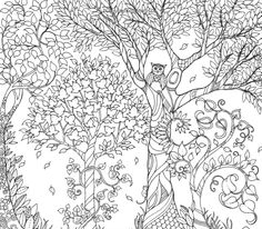 Secret Garden Coloring Book Pages Books Adult Free Colouring Gel Pens Johanna Basford Colored Pencils