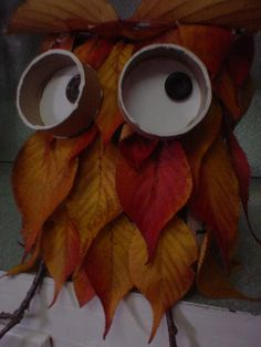 Autumn leaves owl.