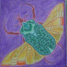 Wild Savannah by Millie Marotta #colouringbook #tropicalwonderland #wildsavannah #milliemarotta #adultcolouringbook #coloring #Cee #fabercastellpolychromos #colouring #derwentcoloursoft #coloredpencils #coloredbycee
