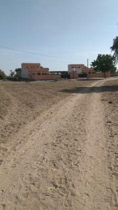My house....in jodhpur