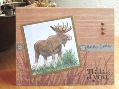 Father's Day Card ~ Walk in the Wild by stampergrl - Cards and Paper Crafts at Splitcoaststampers