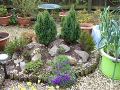 249 best Rockeries images on Pinterest | Landscaping, Dry garden and ...