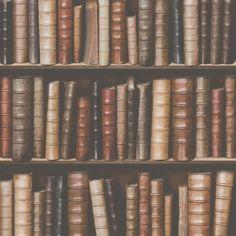 Muriva Bookcase Shelves Library Embossed Vinyl 10m Wallpaper F92328
