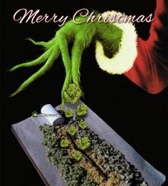 Stoner Grinch Christmas Weed Pic Pinch Of Extra Marijuana Buds Weed Memes Weed Jokes, Weed Humor, Cannabis, Stoner Humor, Weed Pictures, Puff And Pass, Grinch Christmas, Xmas, Humor