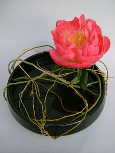 Ikebana with peonies by sogetsudc Ikebana Flower Arrangement, Ikebana Arrangements, Beautiful Flower Arrangements, Most Beautiful Flowers, Floral Arrangements, Ikebana Sogetsu, Traditional Japanese Art, Organic Art, Japanese Flowers