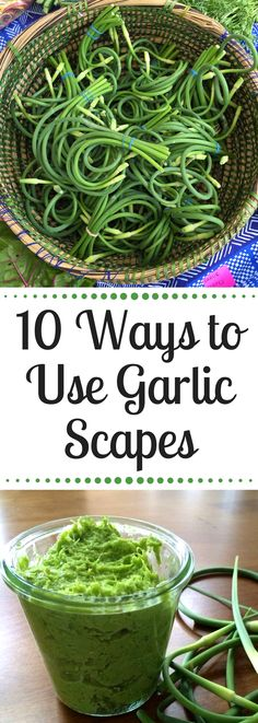 If you've ever wondered what those green curlicues are at the market - they're garlic scapes! This guide will give you all the information you need to eat, cook and enjoy delicious garlic scapes! 10 recipes included! Paleo + Whole30 Recipes Included!
