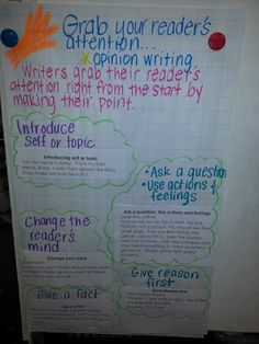 How to write an introduction to an opinion essay?